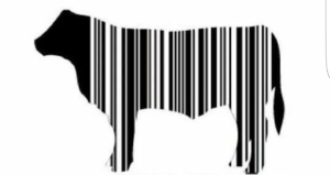 штрихкод на мясе